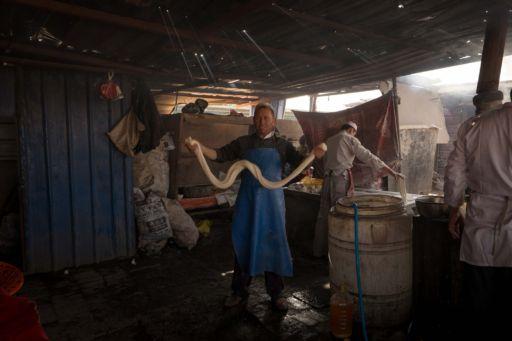 A man makes laghman noodles at a market.